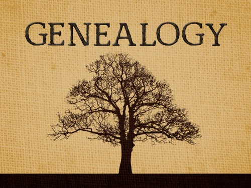 Genealogy2 800 600 500x375 Your Family Tree
