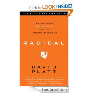 radical What I Read in the Winter of 2013